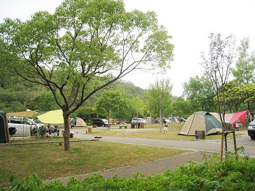 しあわせの村オートキャンプ場全体_5864.JPG