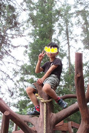森のひととき1_アスレチック遊具2998.JPG