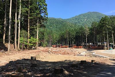 森のひととき3_水害のあと5754.JPG
