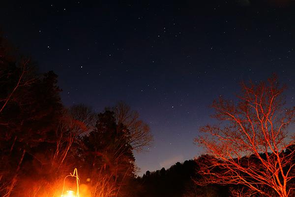 渓谷の森2日目_夜の星空_5247.jpeg