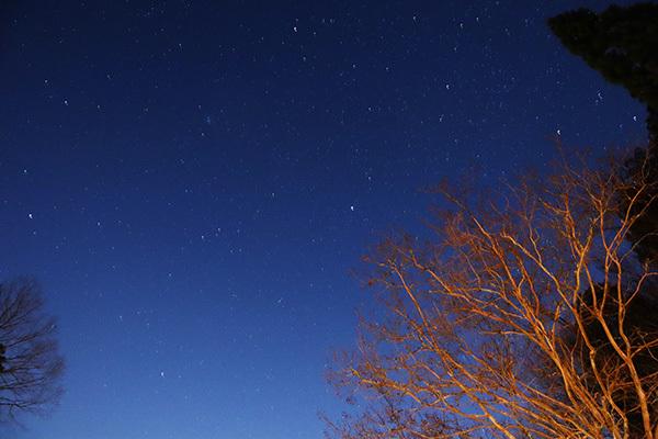 渓谷の森2日目_夜の星空_5258.jpeg